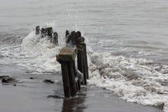 A costa de mar Imagens de Stock Royalty Free
