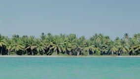 Costa de mar com palmas e água azul do espaço livre filme