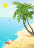 costa de mar con las palmeras y huellas en la arena Imagen de archivo