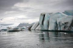 Costa de mar de Islandia de la roca del hielo Imagenes de archivo