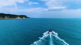 Costa de mar del Mar Negro del vuelo de un pájaro almacen de video