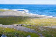 Costa de Mar del Norte, tiempo soleado Fotos de archivo libres de regalías