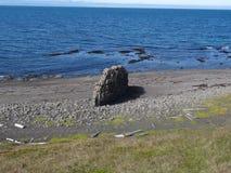Costa de mar islandêsa Foto de Stock