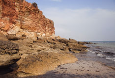 Costa de mar no 'maré baixa' Imagens de Stock Royalty Free