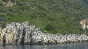 Costa de mar rochosa video estoque
