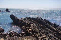 Costa de mar rochosa com Pebble Beach, ondas com espuma Imagens de Stock
