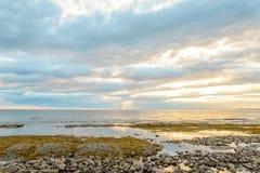 Costa de Northumberland perto da ponte da confederação Fotografia de Stock Royalty Free