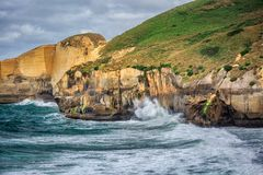 Costa de Nova Zelândia imagens de stock