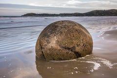 Costa de Nueva Zelanda Fotos de archivo libres de regalías