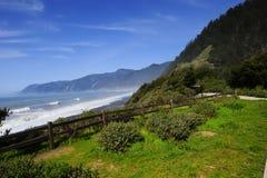 Costa de Oregon fotografia de stock royalty free