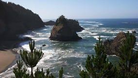 Costa de Oregon en la bahía del depoe almacen de video