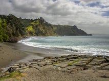 Costa de Pakari cerca de la isla de la cabra, tierra del norte Nueva Zelanda Imagen de archivo libre de regalías