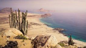 Costa de Pan de Azucar National Park en Chile Costa del desierto de Atacama foto de archivo