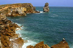 Costa de Peniche Fotografia de Stock Royalty Free