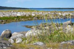 Costa de piedra del mar blanco Fotos de archivo libres de regalías