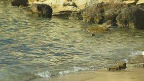 Costa de piedra en el fondo de un paisaje pintoresco del mar almacen de video