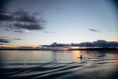 Costa de Puget Sound Fotos de archivo