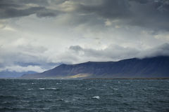 Costa de Reykjavik Imagem de Stock