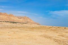 Costa de sal do Mar Morto Imagens de Stock
