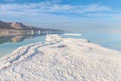 Costa de sal do Mar Morto israel Fotos de Stock