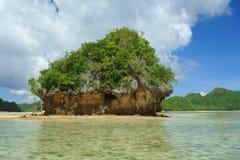 Costa de Siargao Fotos de Stock Royalty Free