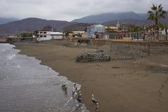 Costa de Taltal en el Atacama fotografía de archivo
