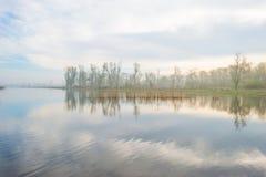A costa de um lago nevoento na mola imagens de stock royalty free