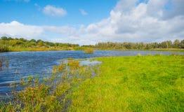 Costa de um lago no clima de tempestade na queda Foto de Stock