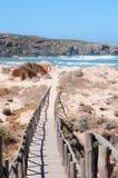 A costa de Vicentina no Algarve Portugal Fotografia de Stock Royalty Free