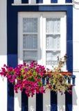 costa dekorujący nowa typowy okno Zdjęcia Stock