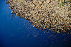 Costa del fiume con le pietre del fiume Fotografia Stock Libera da Diritti