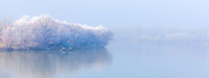 Costa del fiume sulla mattina nebbiosa Immagini Stock Libere da Diritti