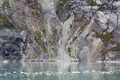 Costa costa del Glacier Bay del ` s de Alaska Fotos de archivo