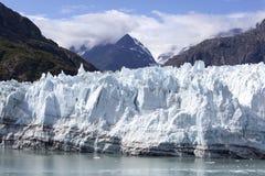 Costa costa del hielo del ` s del Glacier Bay del ` s de Alaska Imagen de archivo