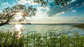 Costa del lago di sera archivi video