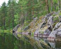Costa del lago Onega Karelia Foto de archivo libre de regalías