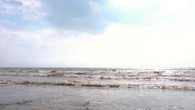 Costa del mar Báltico en día soleado del otoño cantidad Vista de las ondas del mar en otoño almacen de metraje de vídeo