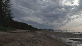 Costa del mar Báltico por la tarde del verano almacen de video