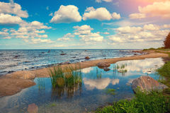 Costa del Mar Baltico Fotografia Stock