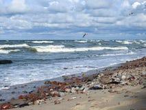 Costa del Mar Baltico, Lituania fotografie stock libere da diritti