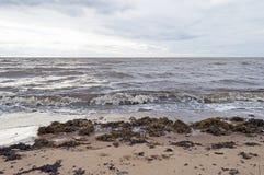 Costa del mar blanco, cielo nublado Foto de archivo libre de regalías