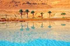 Costa del mar muerto imagenes de archivo