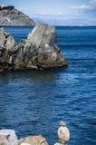 Costa del Mar Negro La ciudad de Partenit imagenes de archivo