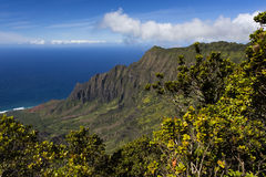 Costa del Na Pali - Kauai, Hawai Immagini Stock