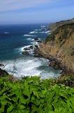 Costa del nord di California Fotografie Stock