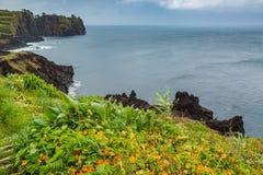 Costa del nord di sao Miguel Island, l'Oceano Atlantico fotografia stock libera da diritti