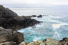 Costa del océano Imagen de archivo libre de regalías
