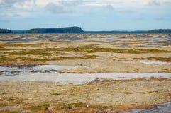 Costa del océano de la marea baja en South Pacific Fotografía de archivo libre de regalías