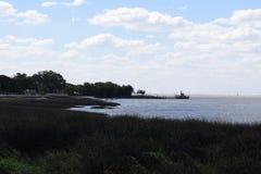 Costa del océano demasiado grande para su edad con la hierba, área ecológicamente limpia Foto de archivo