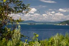 Costa del Pacífico 5 foto de archivo libre de regalías
